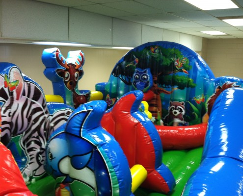 birthday party rental animal theme
