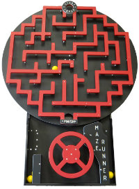 maze runner game rental