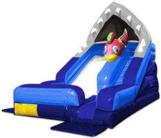 childrens inflatable rental slide
